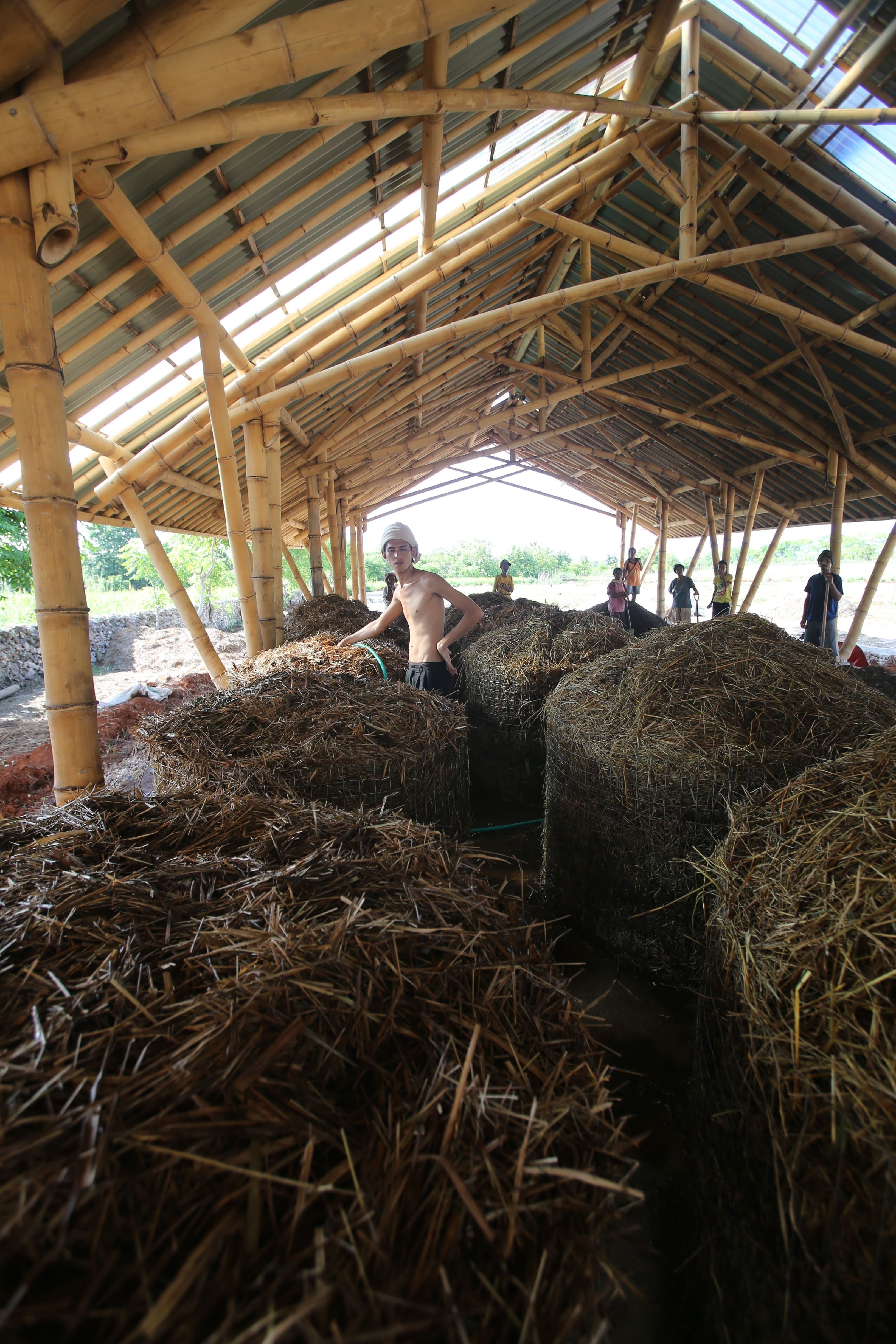 Compost making in Sumba