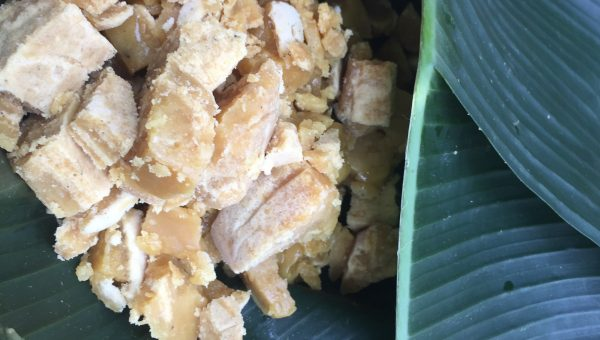 Coconut sugar from Green Camp