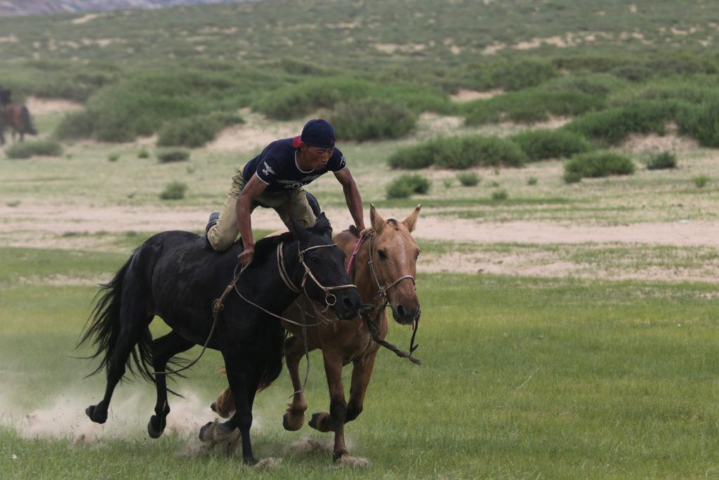 Mongolian rodeo rider