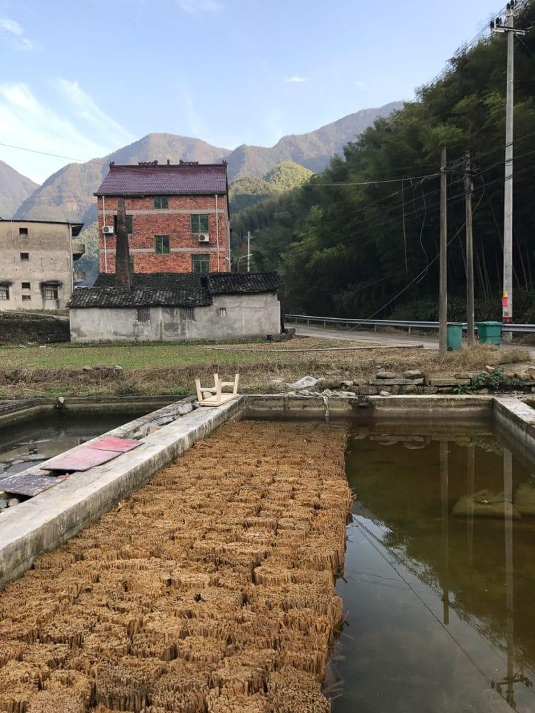 Bamboo soaking in China