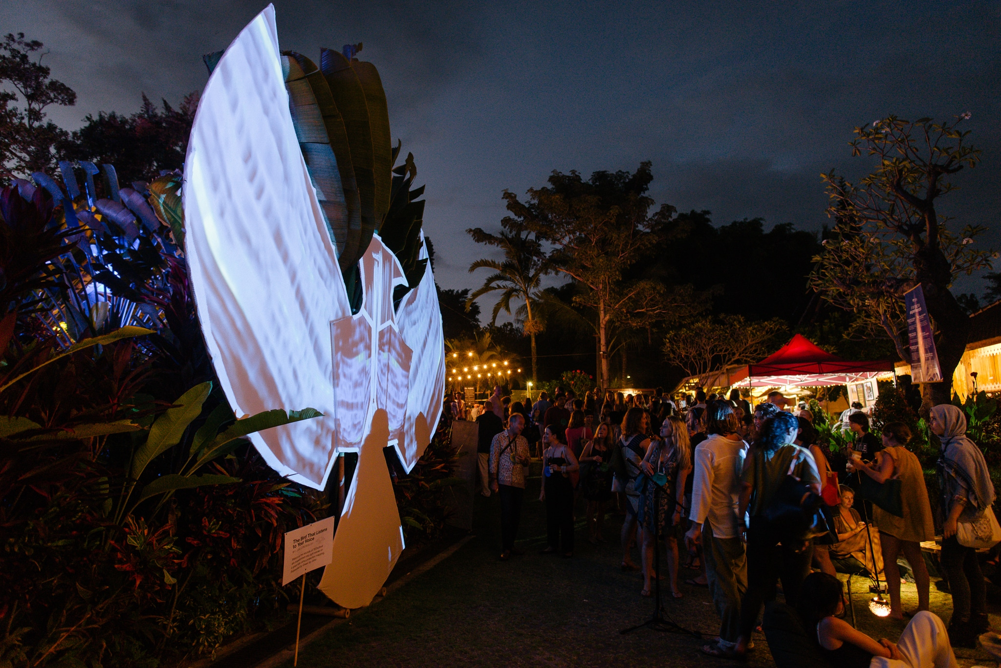 Installation by Joe Crossley at TEDxUbud