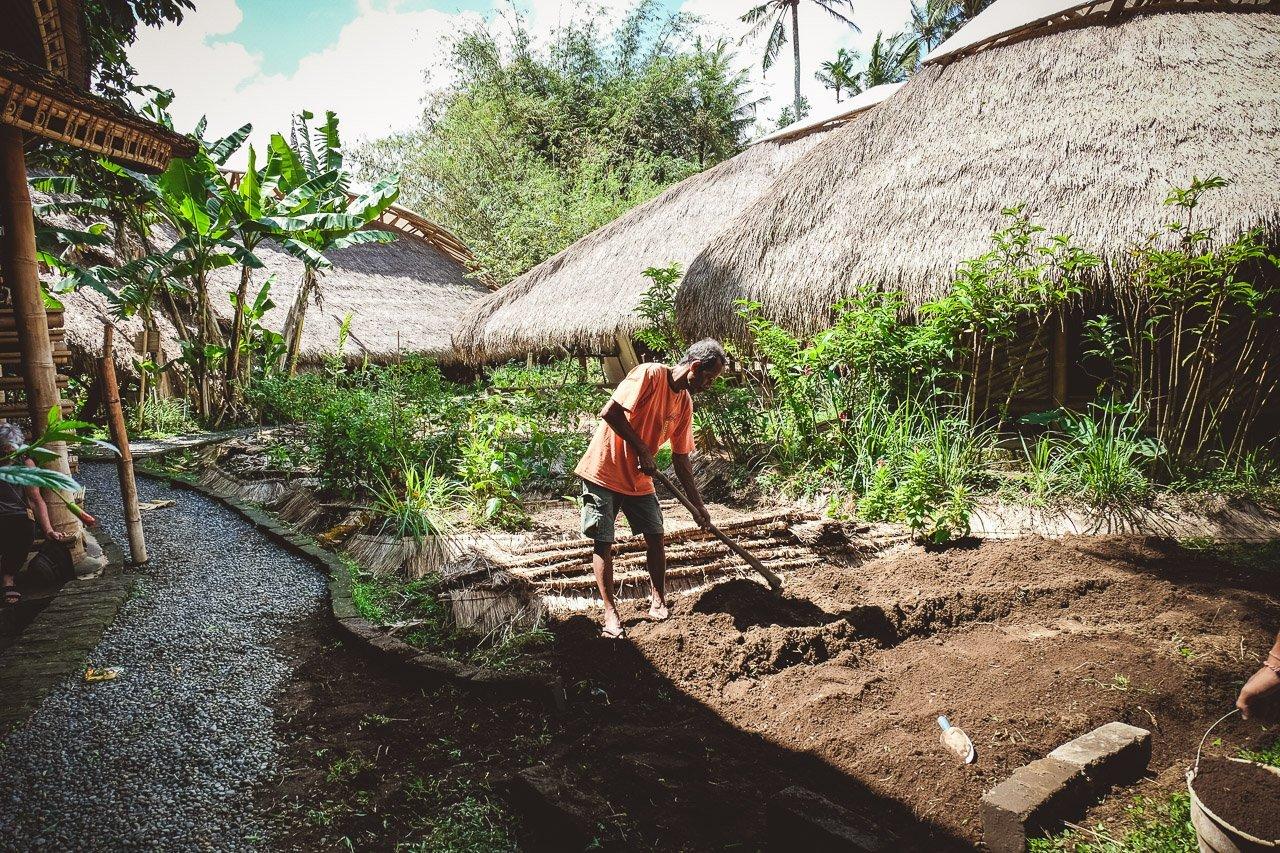Green School permaculture garden